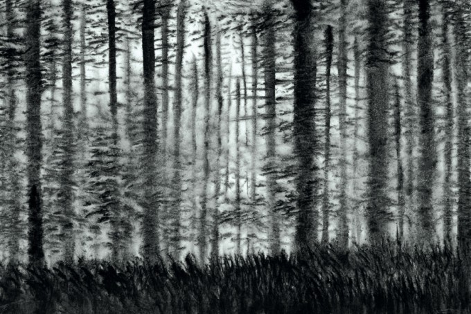 The Woods 2 45cm x 68cm