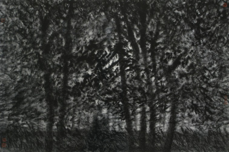 The Woods 10 46cm x 68cm