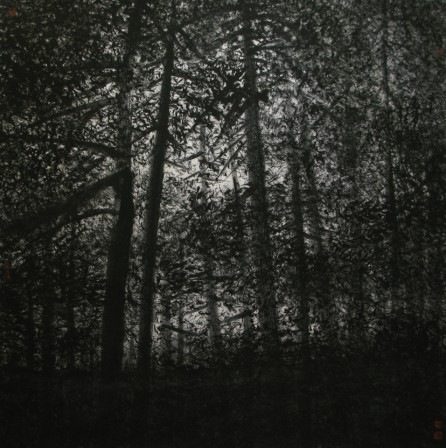 Deep In the Forest 69cm x 69cm